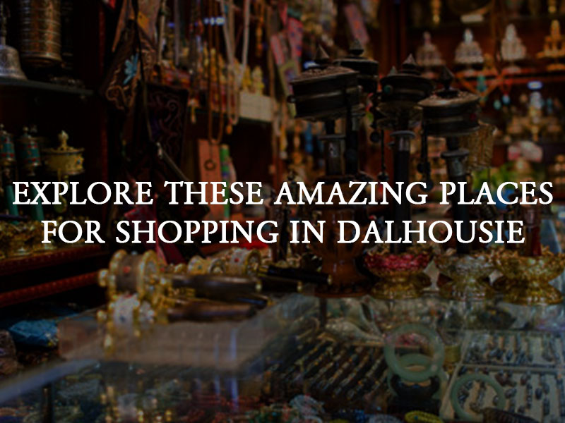 Explore These Amazing Shopping Places in Dalhousie - Elgin Hall